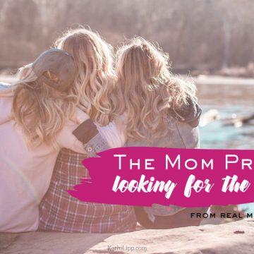 The Mom Project - Kathi Lipp